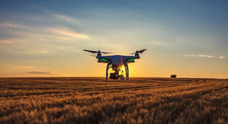Не обязательно использовать для сельского хозяйства специализированные дроны. С рядом задач справятся даже любительские модели вроде серии DJI Phantom