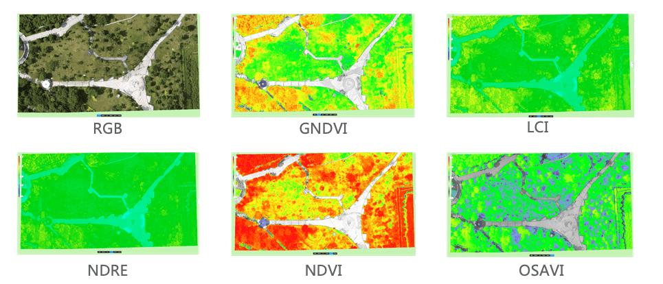 Пример реконструкции индексов в DJI Terra в 2D после съемки квадрокоптером P4M. Обработанные результаты съемки  можно использовать для последующей обработки угодий сельскохозяйственными дронами DJI Agras
