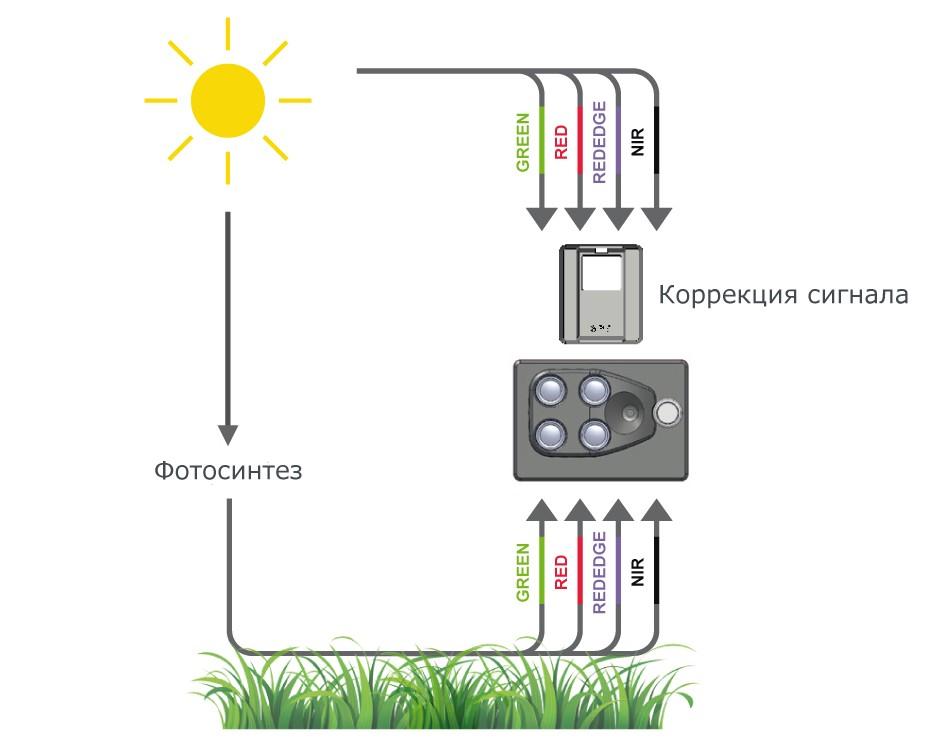 Принцип работы мультиспектральной камеры